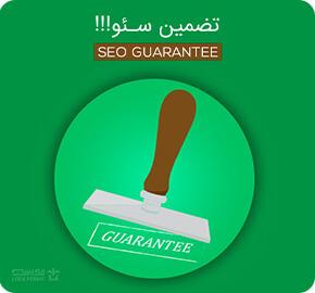 تضمین سئو سایت در اصفهان